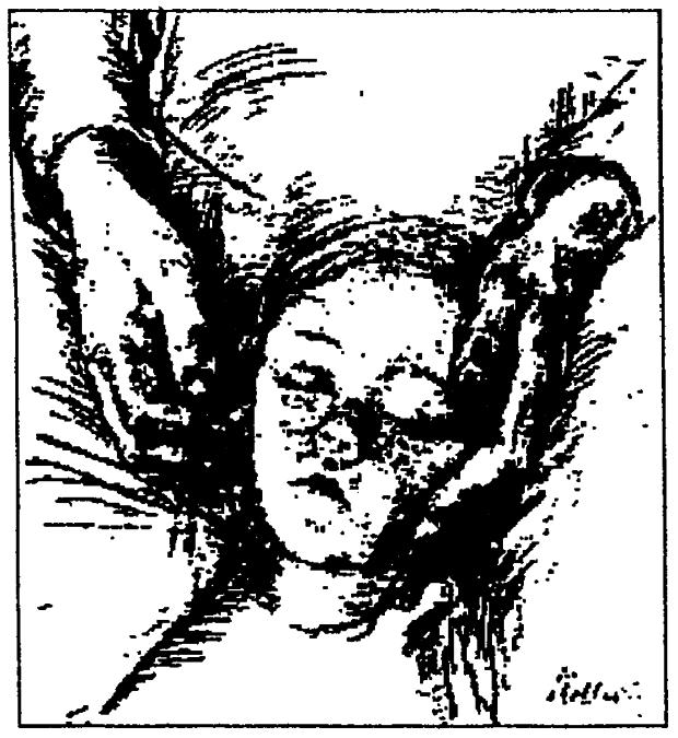 Bild Artikel